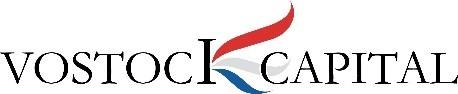 Vostock Capital logo
